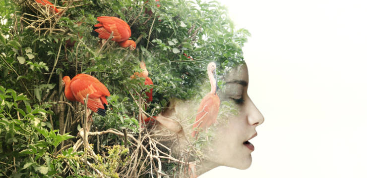 A woman's face in profile, her hair replaced by a tangle of green plants and flamingos. A merging of nature and human.