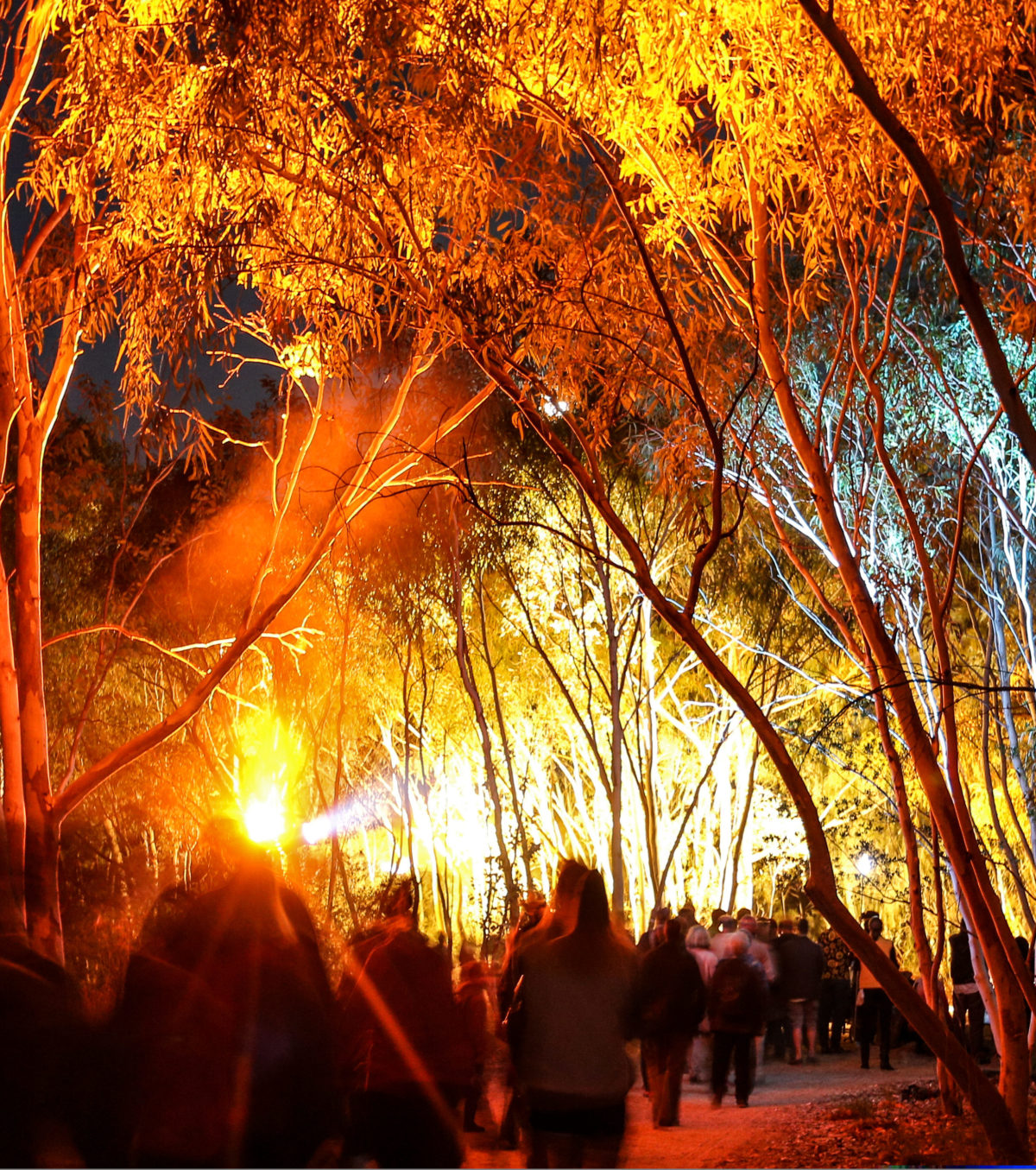 A crowd of people stand under the eucalpyt trees at twilight. In the distance, light pours is if from a huge stage.
